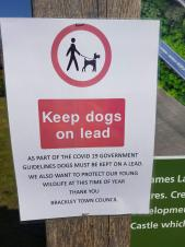 Dog owners urged to keep pets on leads