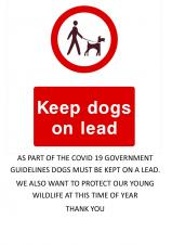 Reminder to ALL dog owners